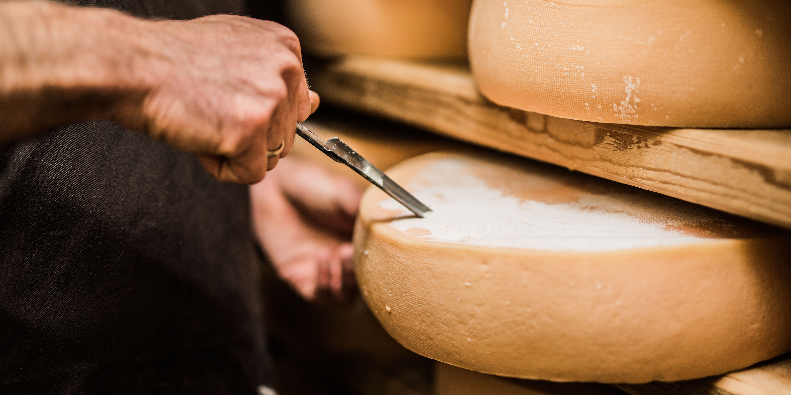 Käse-Wissen: Alles über Käse Tipps und Tatsachen für noch mehr Käse-Genuss
